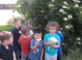 dv_zeko_slatina_020
