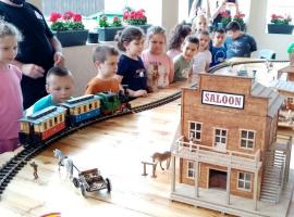 zeko_slatina_vlakovi_7